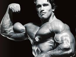 images-arnold arm 1