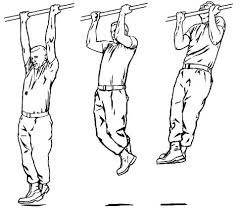 images-close grip pull ups 2