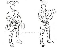 images-dumbell curl