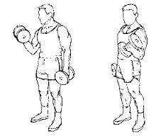 images-twist dumbbell curl