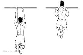 index-close grip pull ups