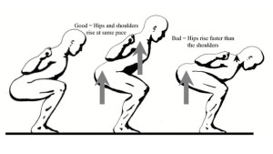 Squat-Diagram